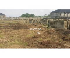 Hottest Land Deal in Sangotedo Ajah