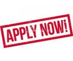 Dept. of Nursing, Niger Delta University, Wilberforce Island 2020/2021 Nursing Admission form
