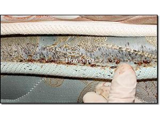 100% EFFECTIVE BED BUG TREATMENTS! Call now - 07033491967 - 1
